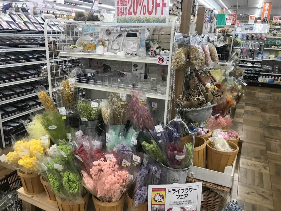 ヴィシーズ埼玉大井店のドライフラワー