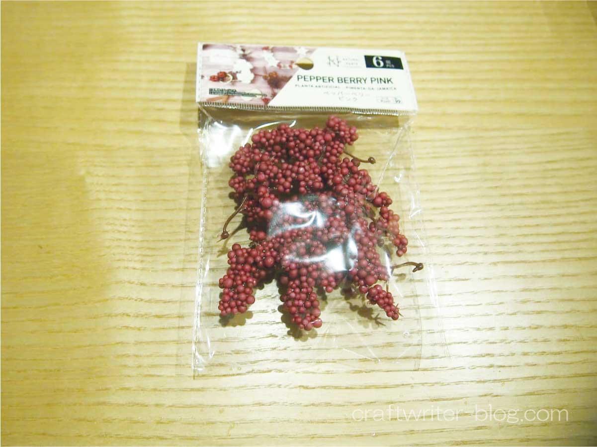 赤い色の小さい実がたくさん成った植物